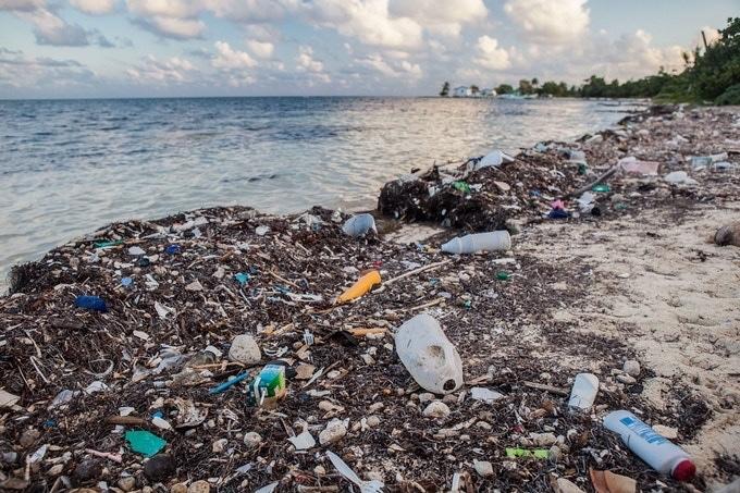 Océan - Pollution plastique