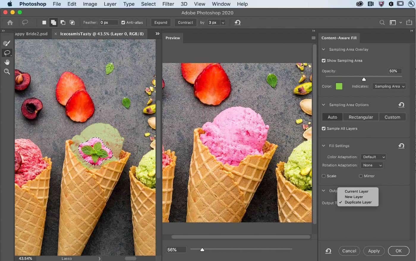 Photoshop - Puce M1